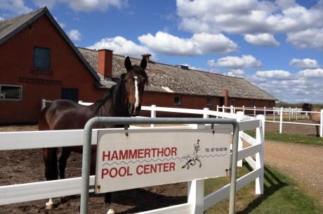 Hammerthor Pool Center udenfor skilt